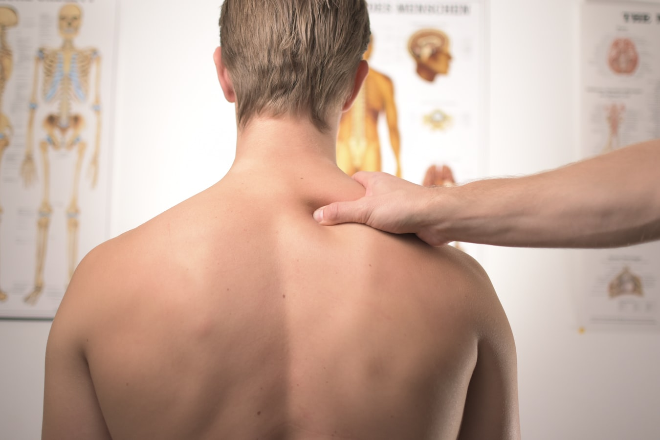 programa_gestión_fisioterapia
